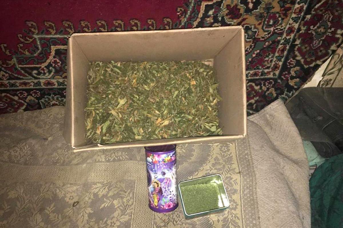 В Бердянском районе полиция изъяла 300 грамм канабиса