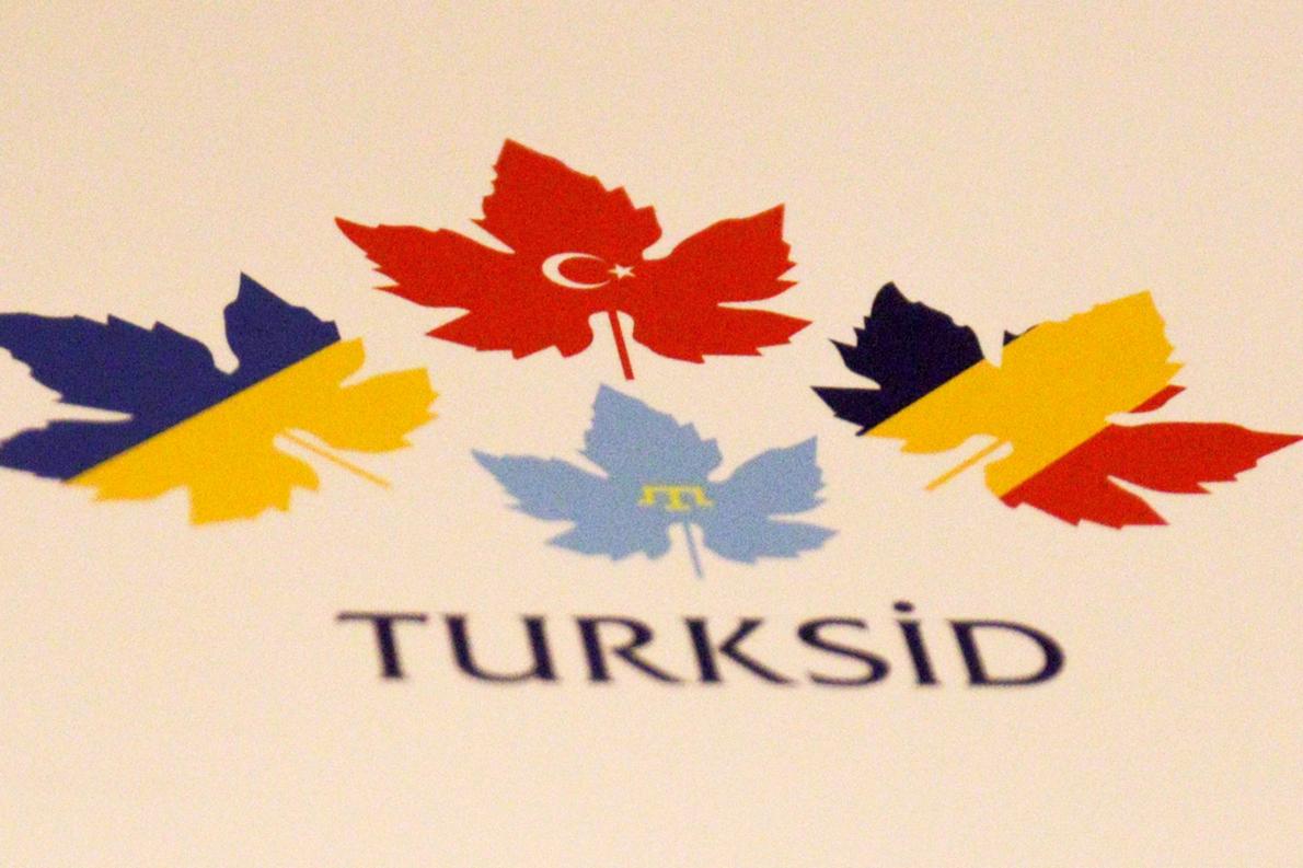 Read more about the article Куда пропали турецкие инвесторы Валерия Баранова?